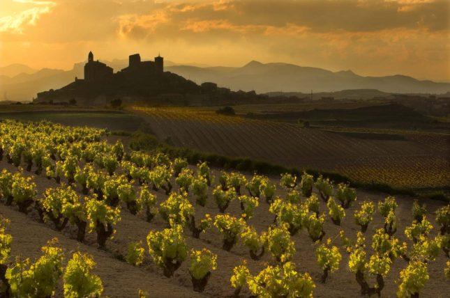 Rioja Dusk
